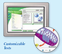 Example of customizable tests